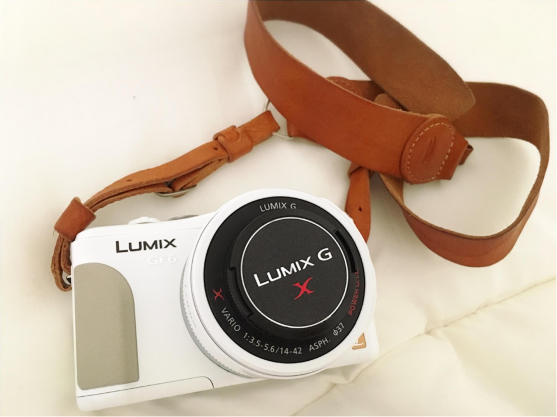 ★晴れた日は、カメラを持って昭和記念公園へ☺︎my camera は『LUMIX』!!_2