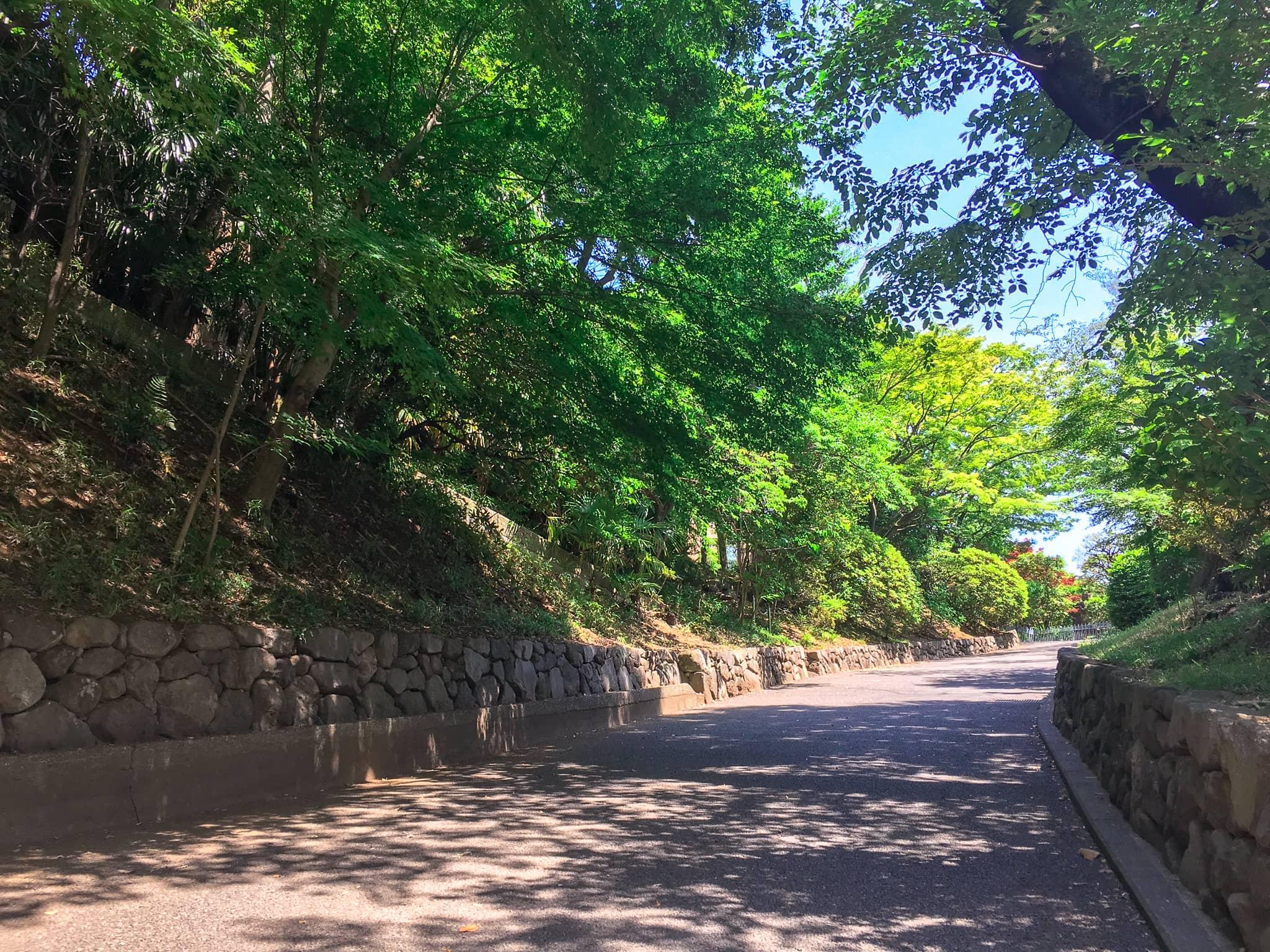 鳩山会館入口に続く坂道