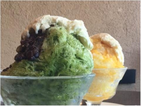 【ご当地かき氷】ここでしか食べれないご当地かき氷❤️広島・尾道で人気な《尾道浪漫珈琲》_2