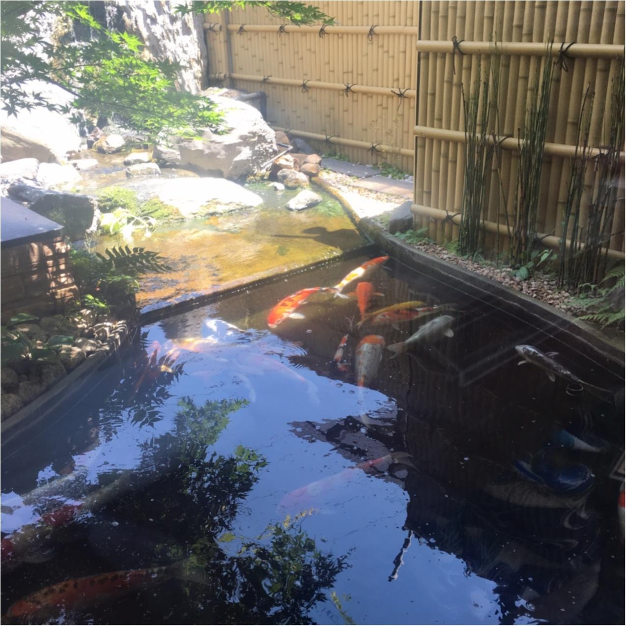 お豆腐好きな女子必見♪ 京都で美味しい豆腐料理が食べられるお店♡_2