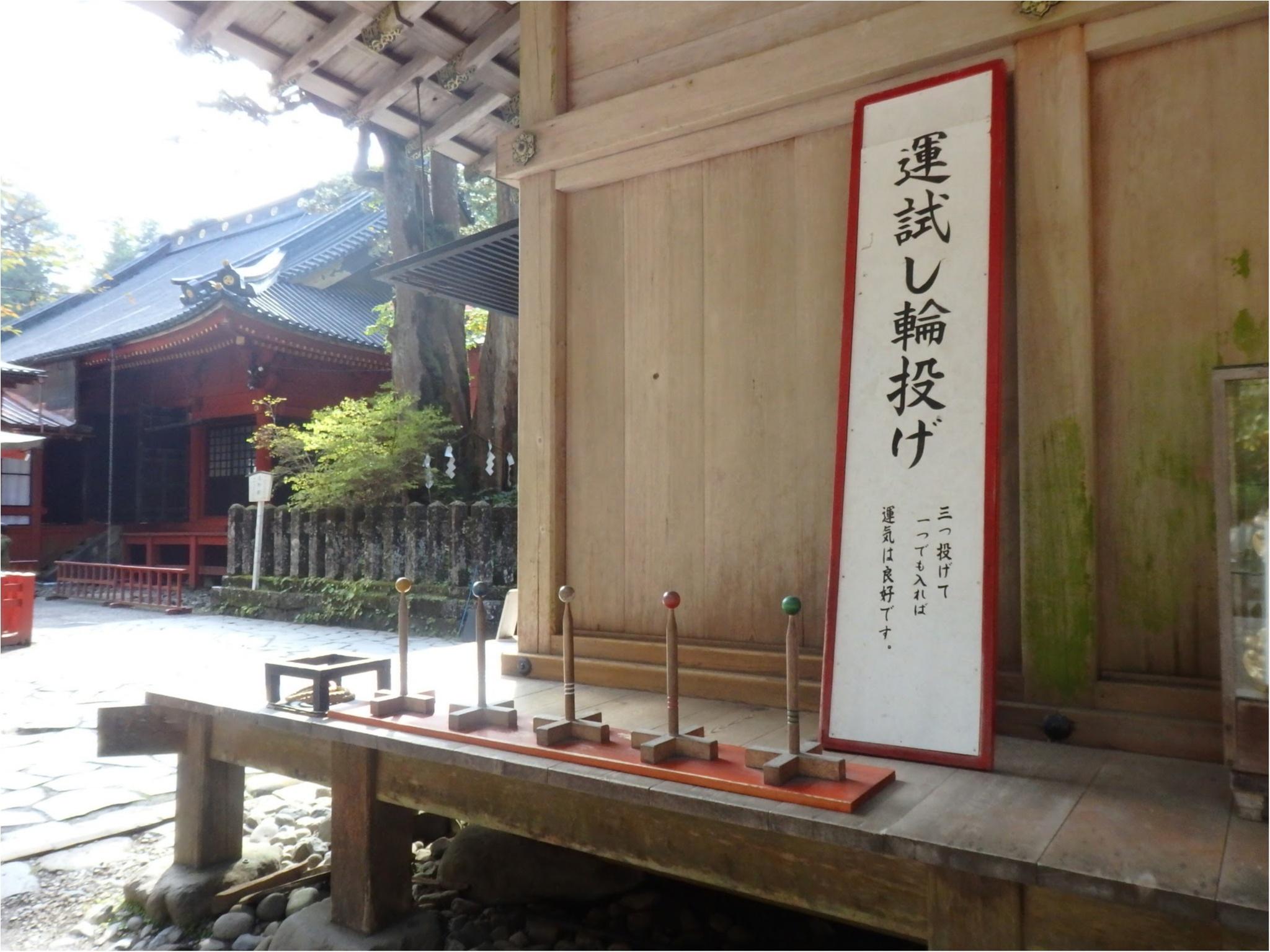 【知らなかった!】日本一楽しめる神社へ潜入してみた_22