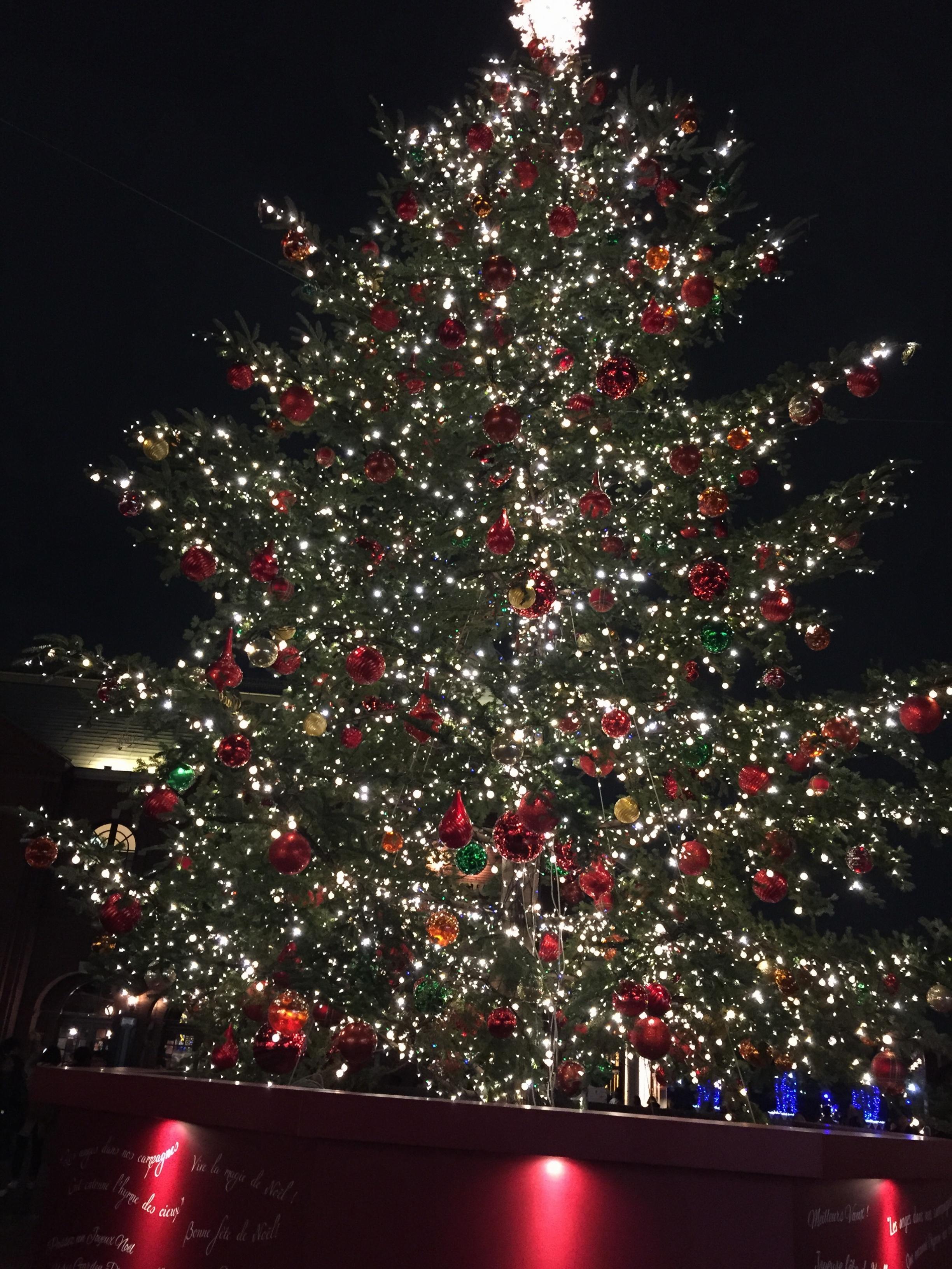 ♡25日クリスマスあなたはどこへ行く?都内のおすすめイルミネーション・クリスマスマーケット♡_5