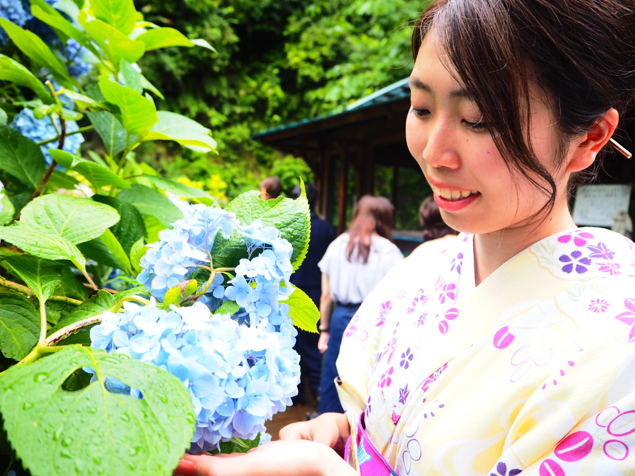 夏着物で鎌倉女子旅♡  紫陽花がとっても綺麗でした♡_12