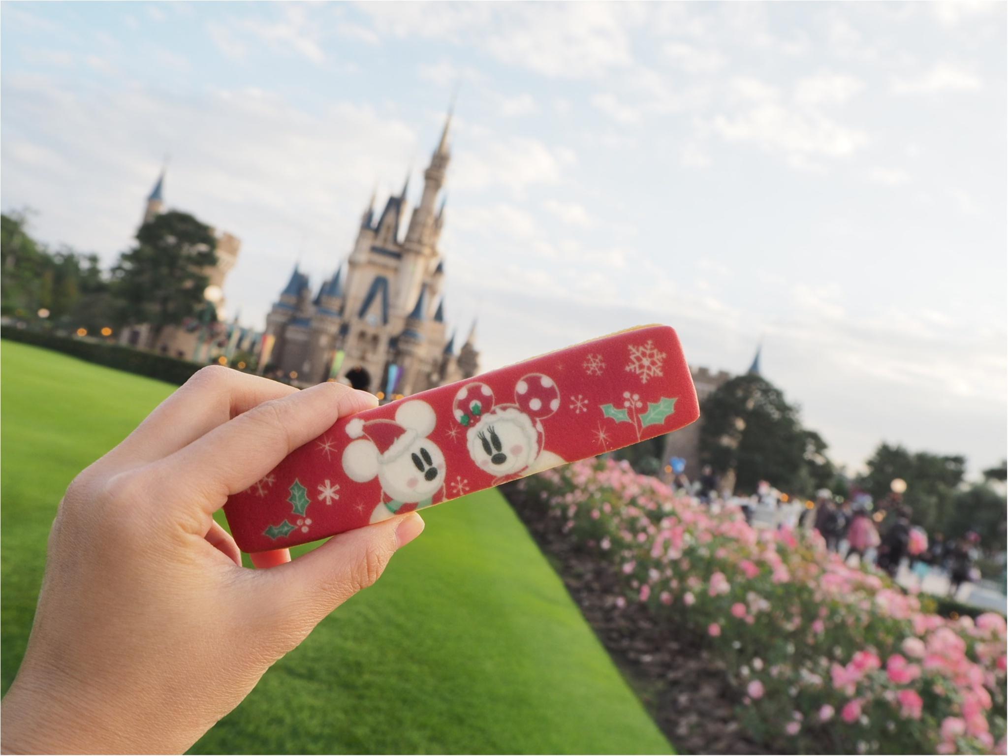 ディズニーランドクリスマスシーズン到来♪ー今の時期食べたいクリスマスグルメからお土産までー_9