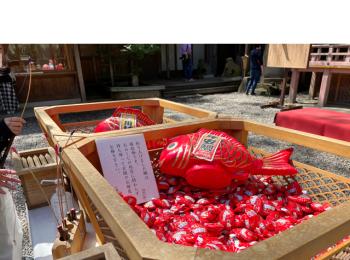 【川越を遊び尽くす!】縁結びで有名!○○神社に行ってまいりました!