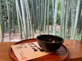 【鎌倉】抹茶が飲める、報国寺...☆