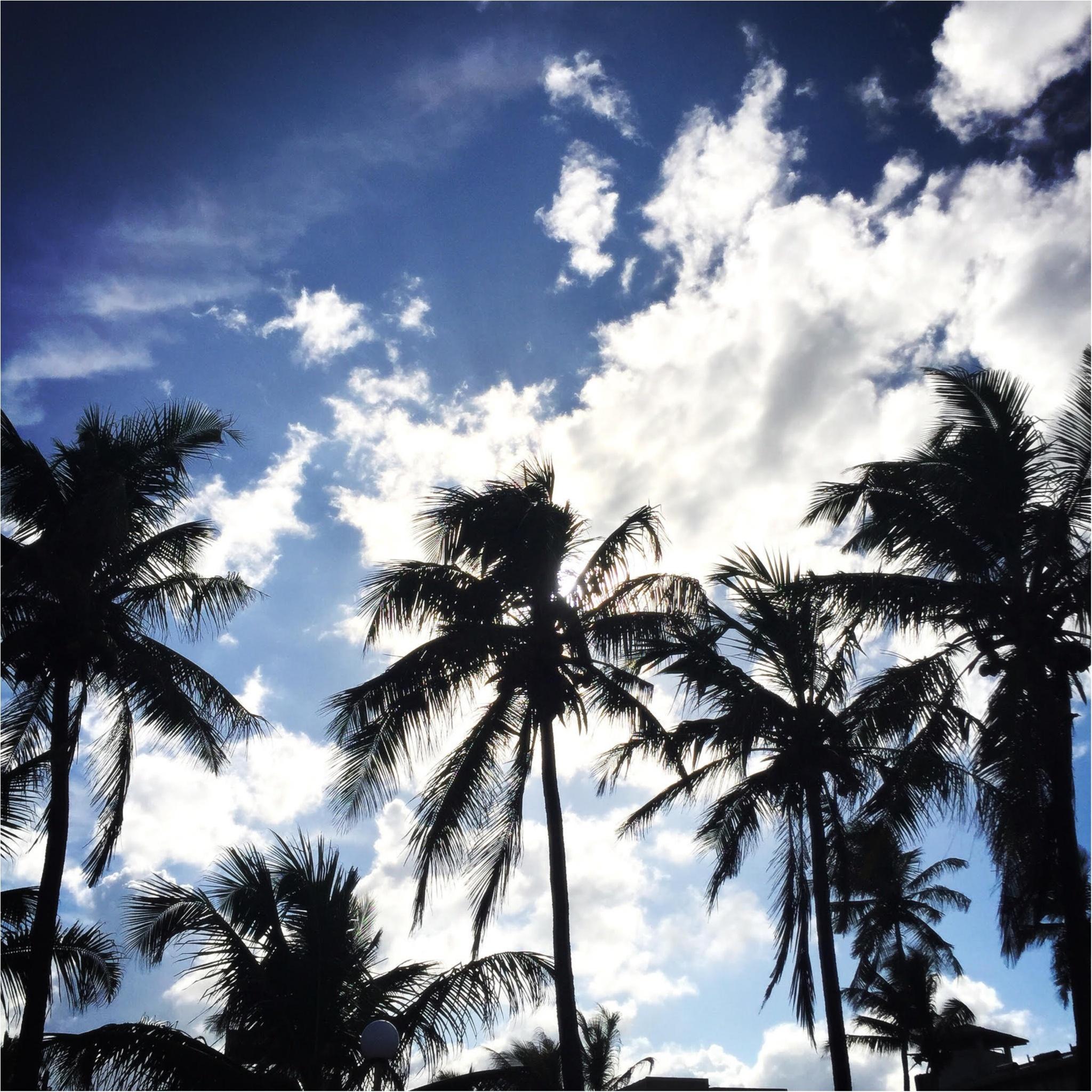 海外旅行でおすすめの癒しの国「スリランカ」♡_2