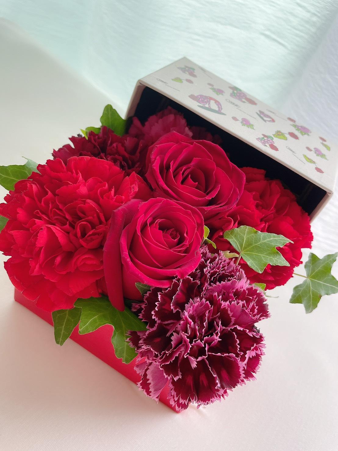 【野性爆弾くっきー!×HIBIYA-KADAN】母の日にオススメ!くっきー!と一緒に花のある暮らしを楽しもう!!_1