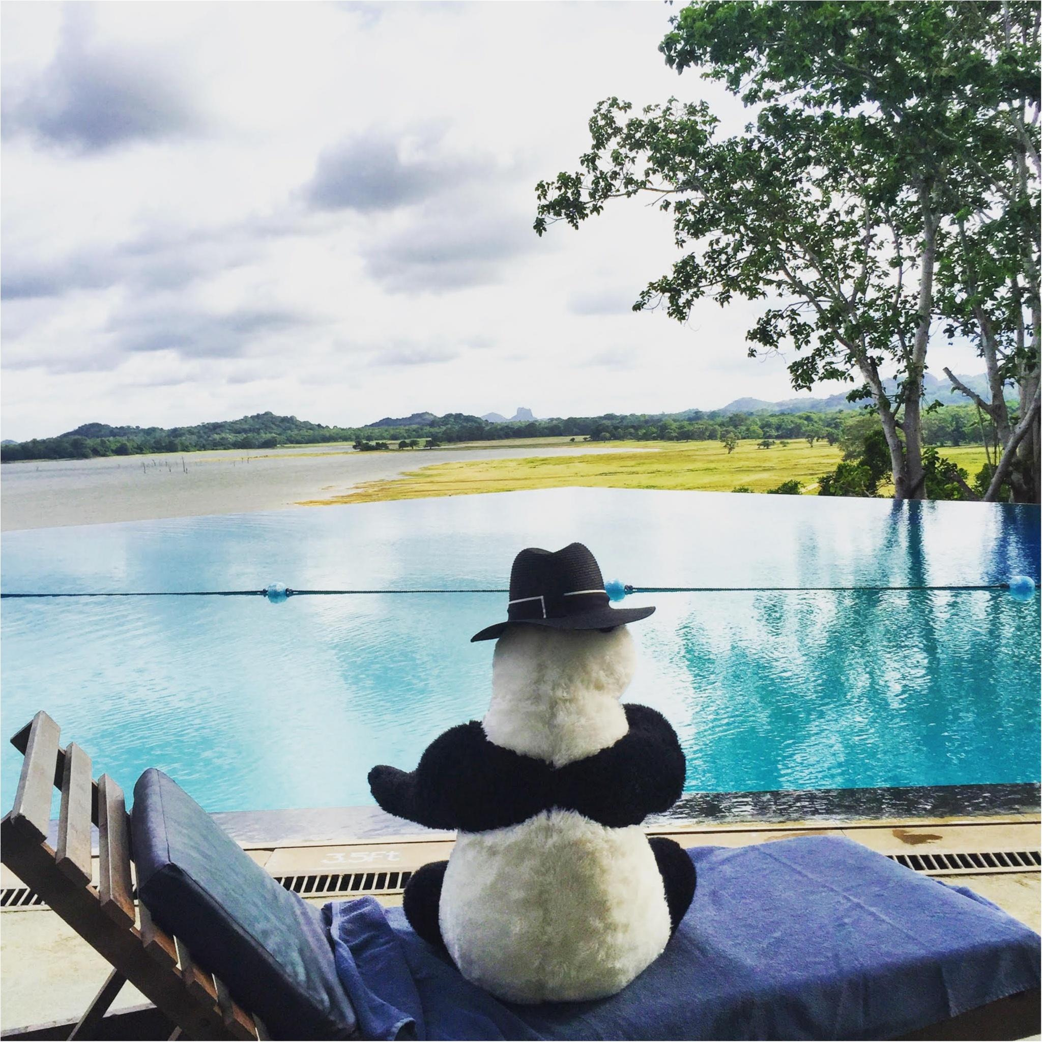 海外旅行でおすすめの癒しの国「スリランカ」♡_6