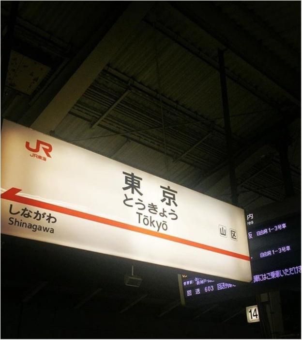 《帰省土産にも便利♡》東京駅で買えるスイーツが可愛いっ♡_1