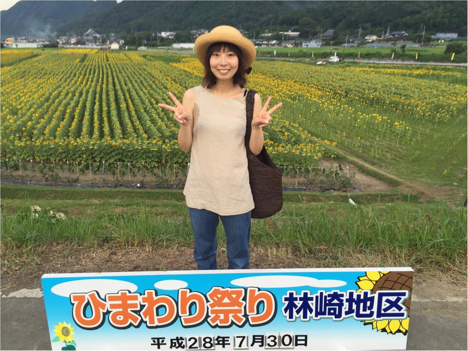 夏だ!8月だ!満開のひまわり畑へ!_11
