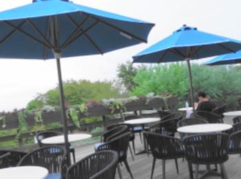 【神戸】神戸布引ハーブ園にいってみたらお洒落なテラスのカフェとハンモックがあってインスタ映えスポットだった