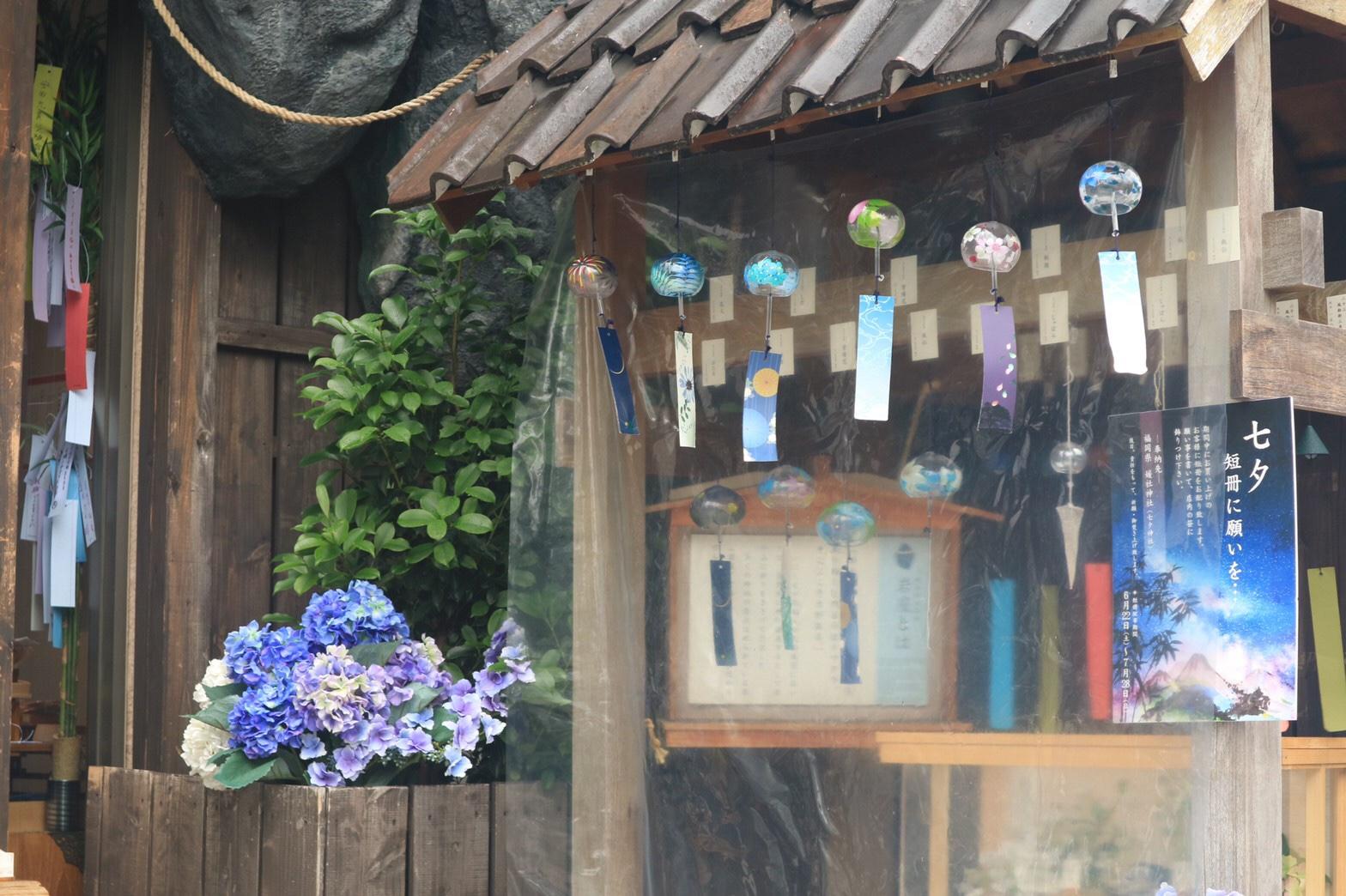 夏着物で鎌倉女子旅♡  紫陽花がとっても綺麗でした♡_21