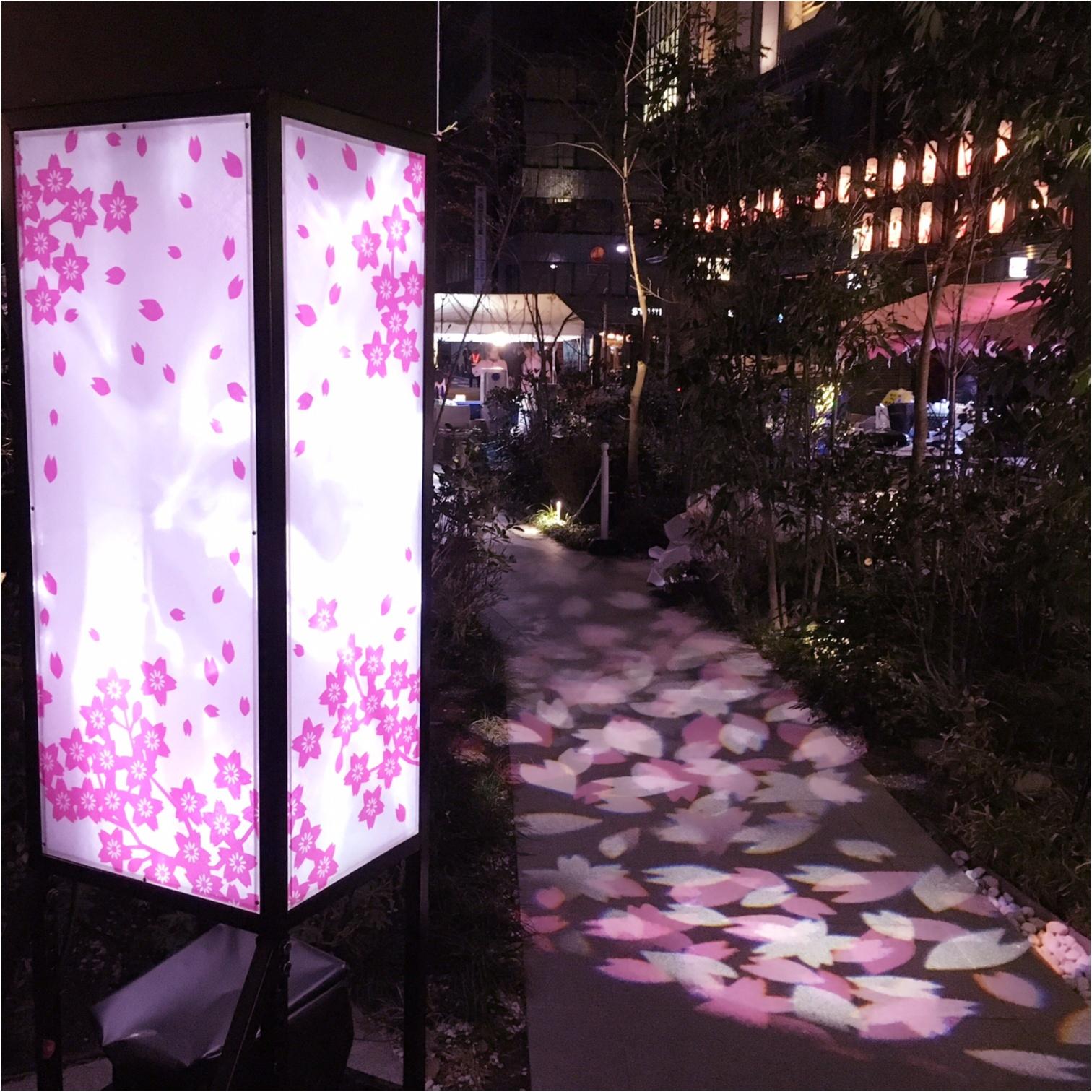 【日本橋桜フェスティバル2017】の【桜色ライトアップ】で一足早くお花見気分(*°○°*)♡_6