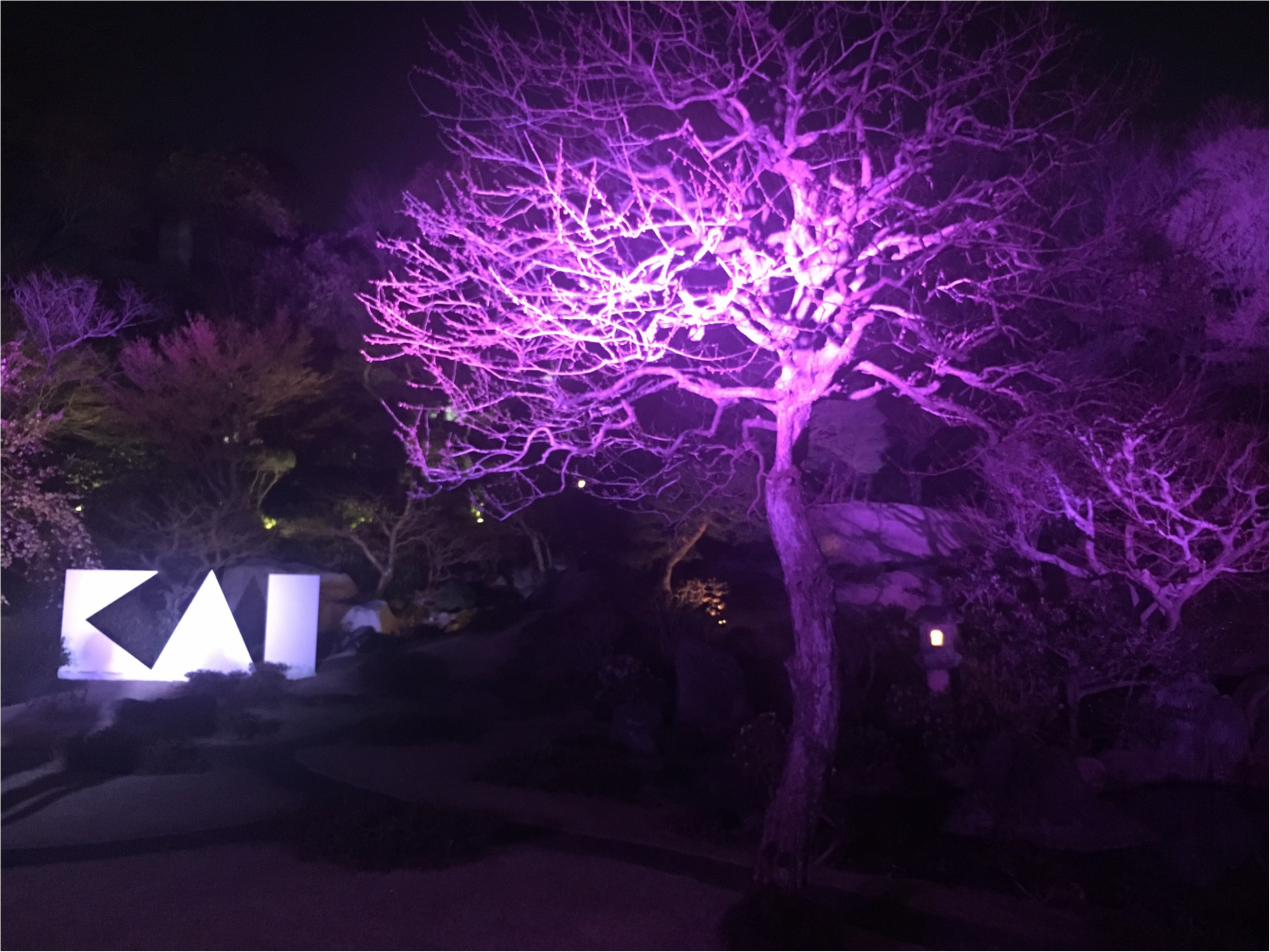 『貝印』シークレットイベント「KAI BEAUTY PARTY」にライターゆうりが潜入! そこは桜舞うスペシャルな空間♡_9