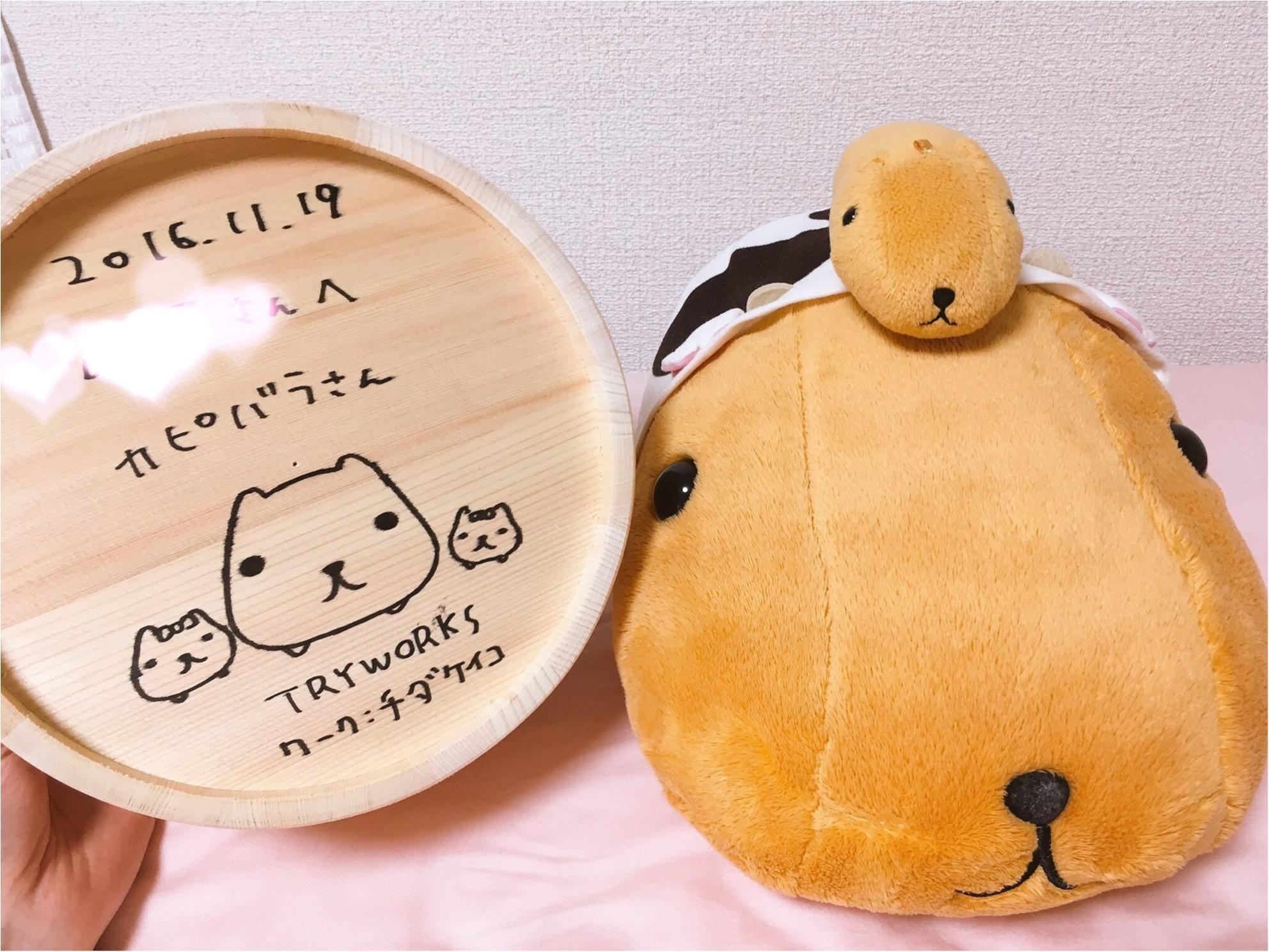 『カピバラさん×東京駅』作者チダケイコ先生サイン会&Calbeeプラスに行ってきました(*´ ˘ `*)♡_7