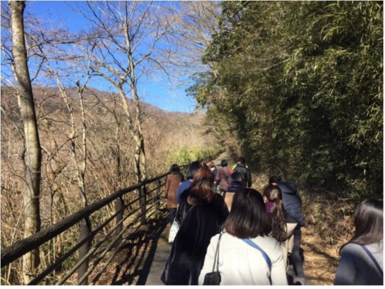 【TRIP】春の贅沢女子旅はこれ!星野リゾート界箱根「はこね春色女子旅プラン」_15