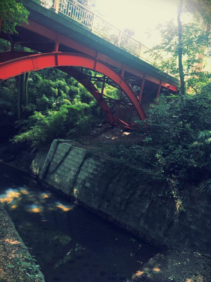 【癒しスポット】東京のオアシス。仕事に疲れたときは森林浴でリフレッシュ!_2