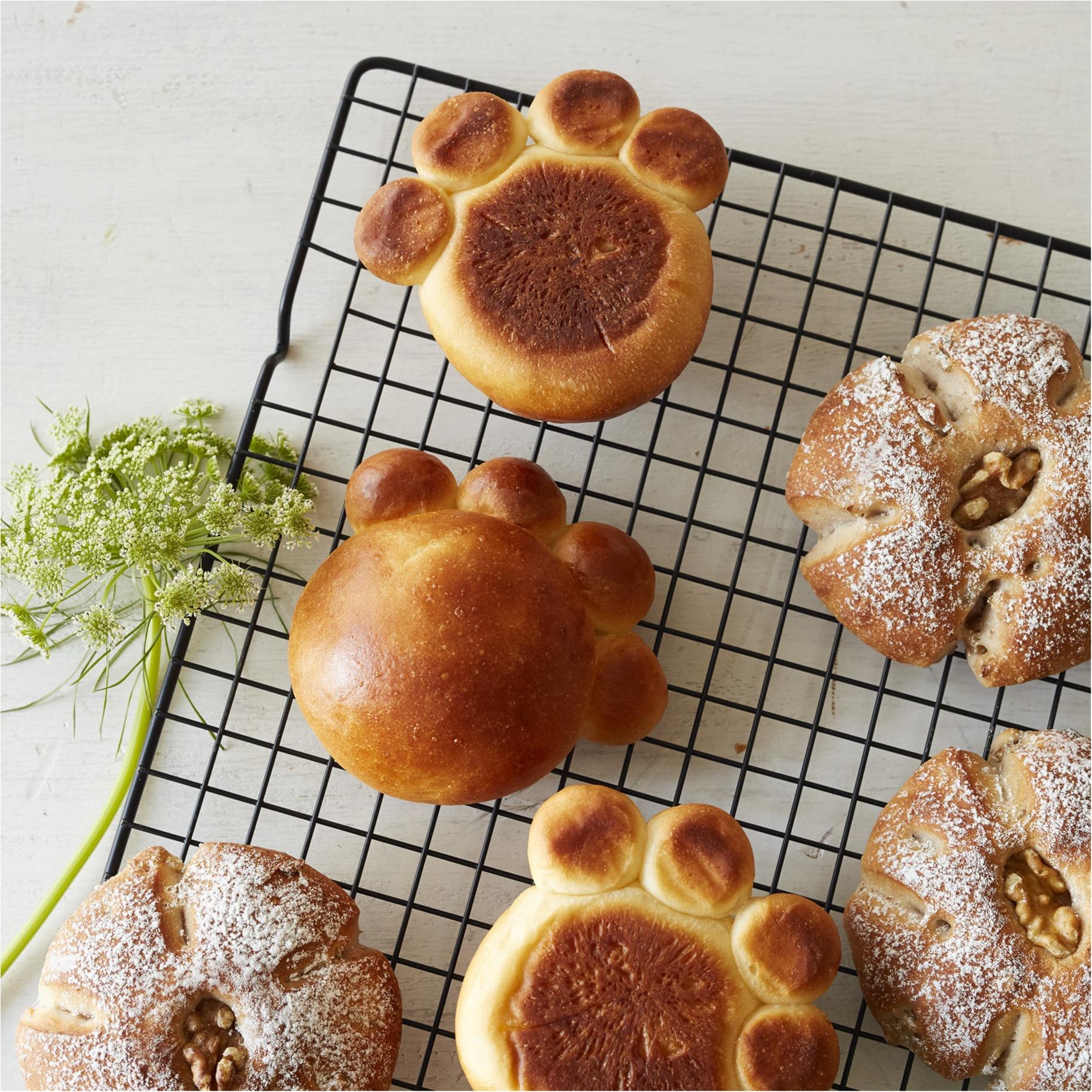 【2月22日はネコの日】テーマは「ネコのお花屋さん」♡ 『アフタヌーンティー』にネコのお菓子やパンがいっぱいです!_1_3