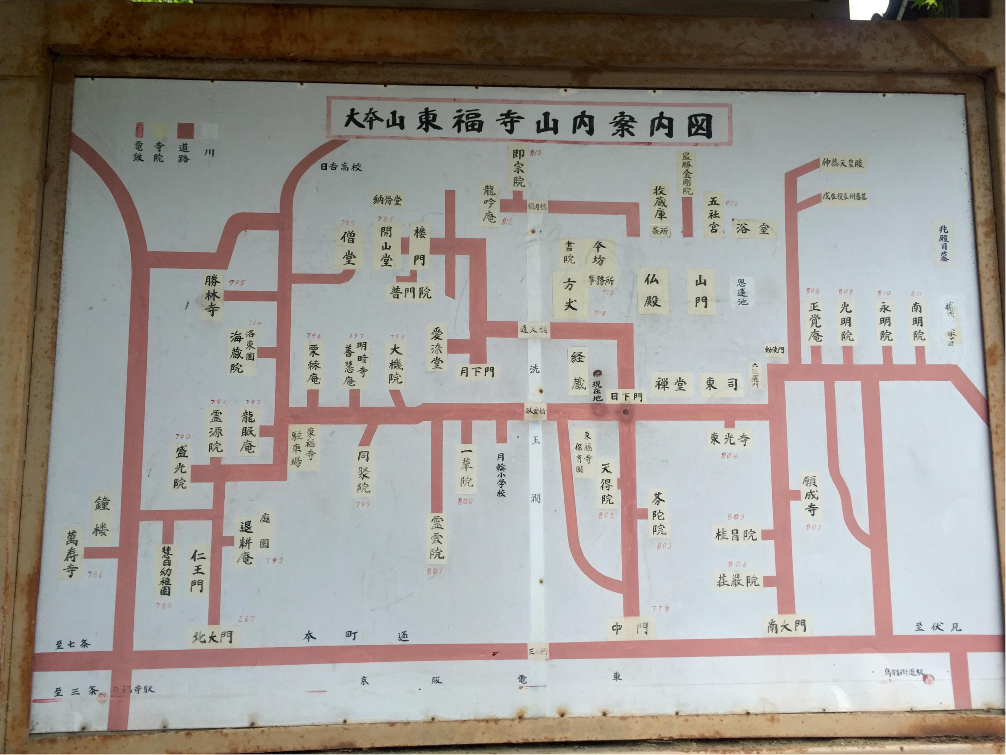【京都】紫陽花を探しに東福寺へ、、思わぬ絶景に感動♡_2