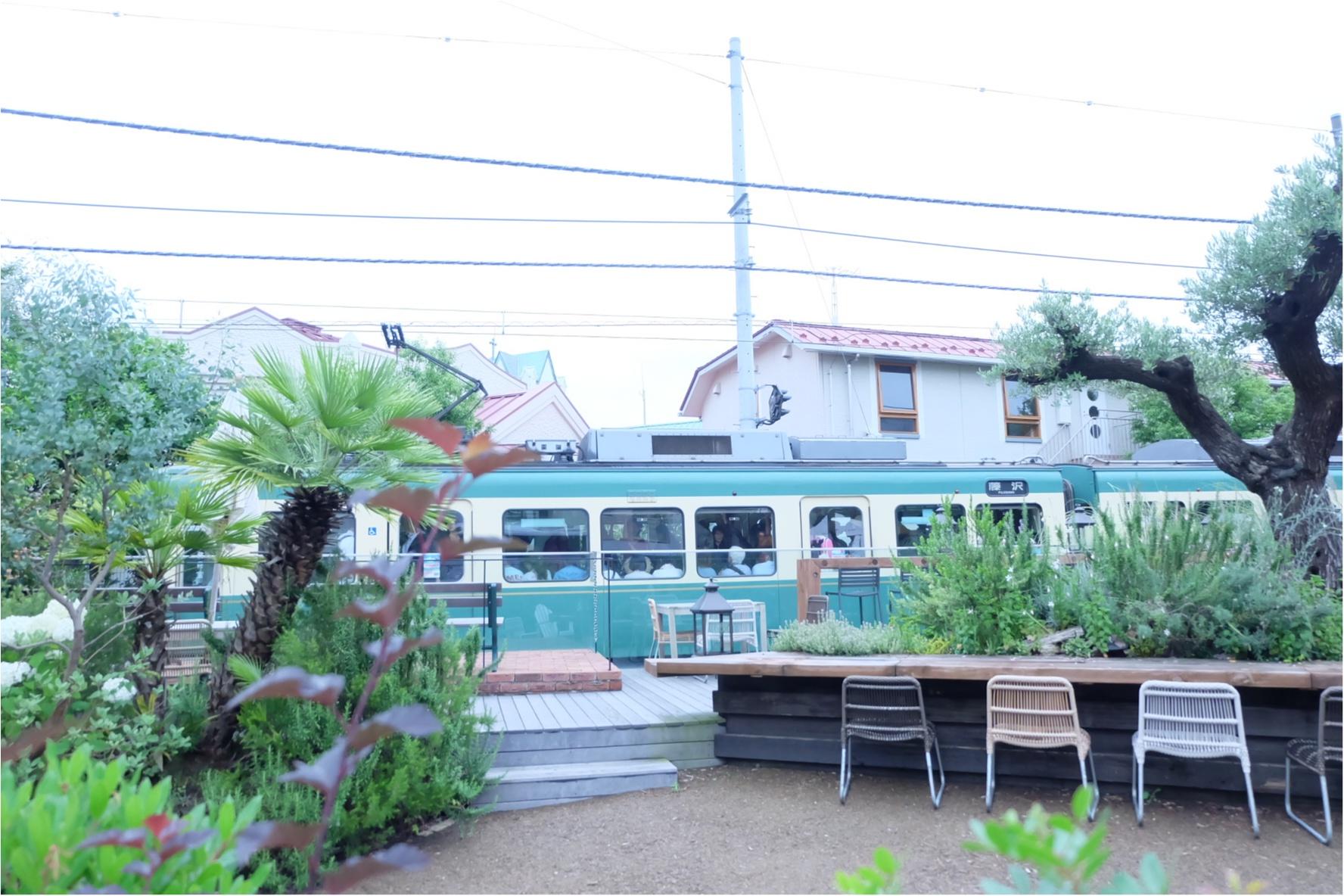 混まない穴場!カラフルで新鮮な鎌倉野菜が食べられるおしゃれレストラン♡_7