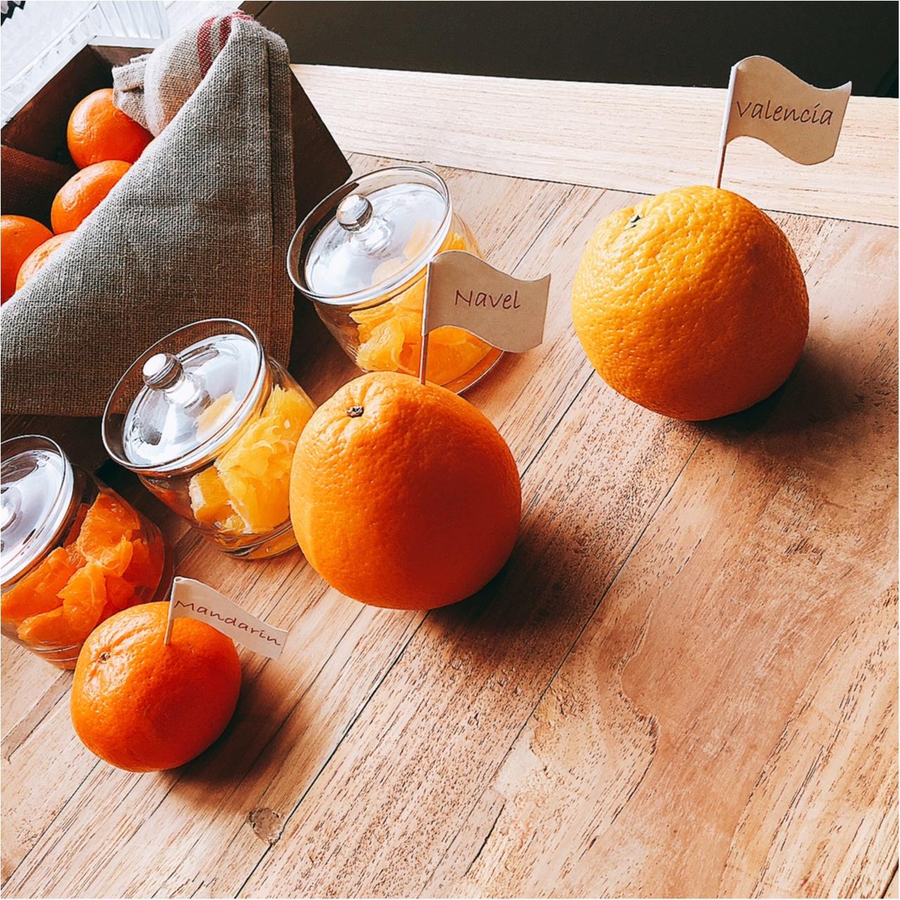 まるでオレンジ丸かじり!!! 『スターバックス』の明日発売の新作フラペチーノはここがすごい!_1
