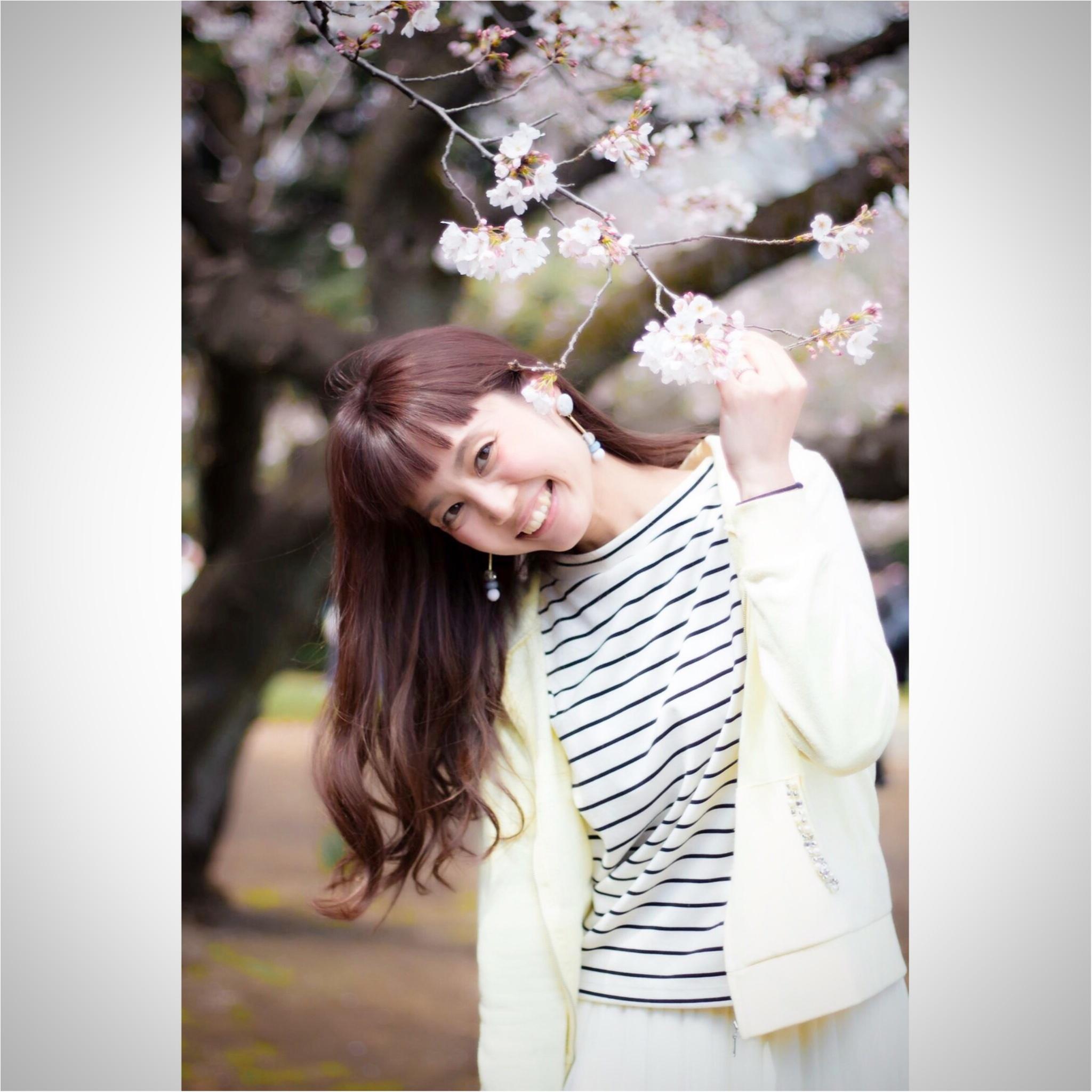 新宿御苑のお花見がゆっくりできるわけ★_3