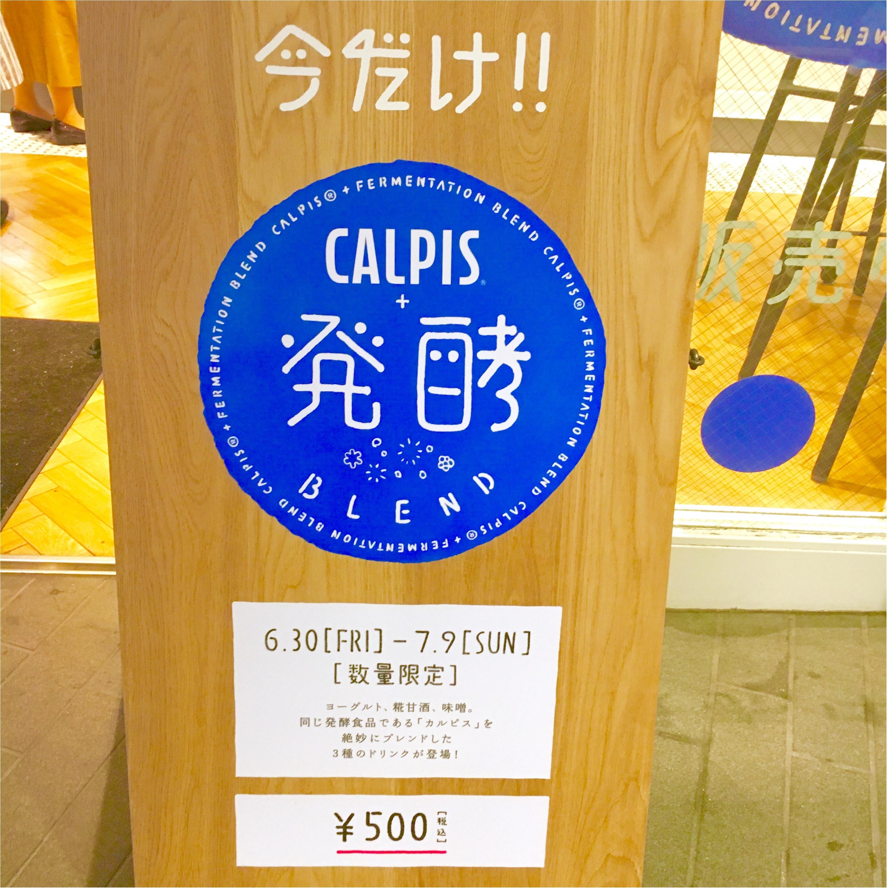 【今しか飲めない ‼︎ @ CAFE】フォトジェニックな《カルピス×発酵》ドリンクが大人気なんです❤️_2
