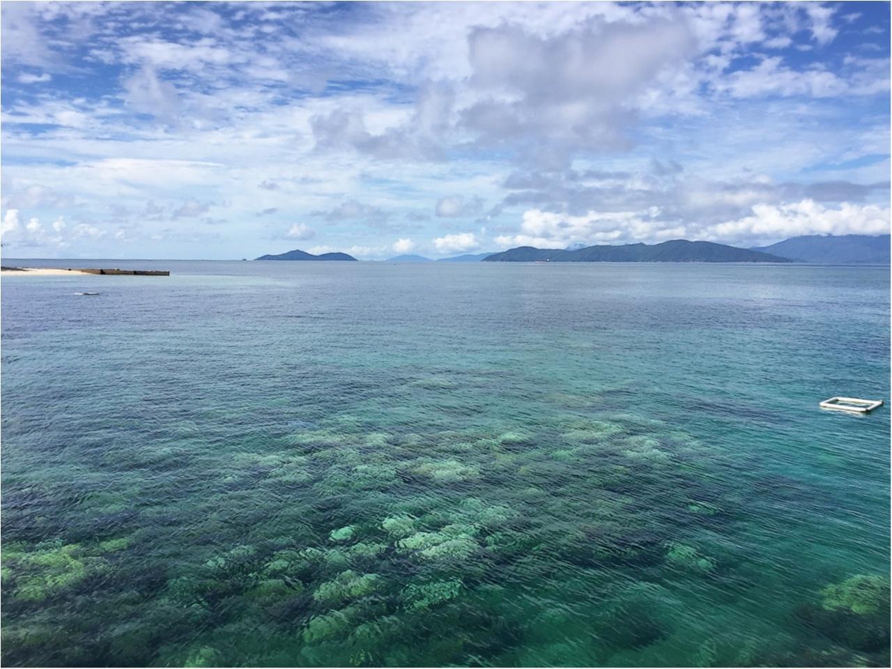 海も森林も大自然をまるっと満喫するなら《オーストラリア・ケアンズ》へ!_1