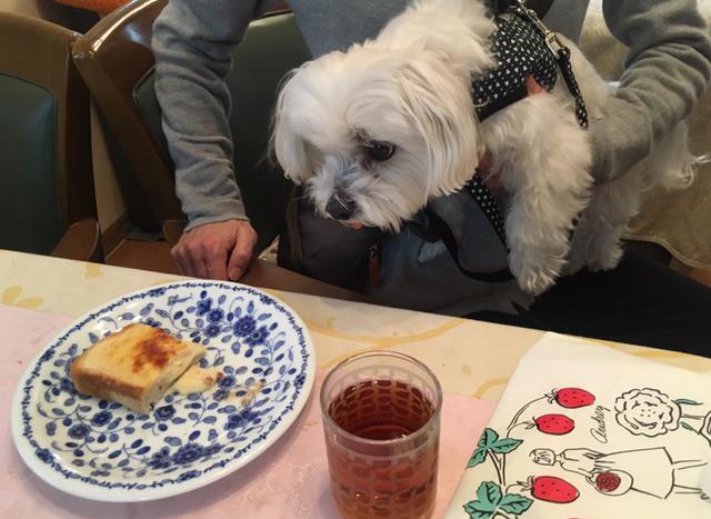 時短!簡単♡家事ヤロウでバズったバスクチーズケーキトースト!_15