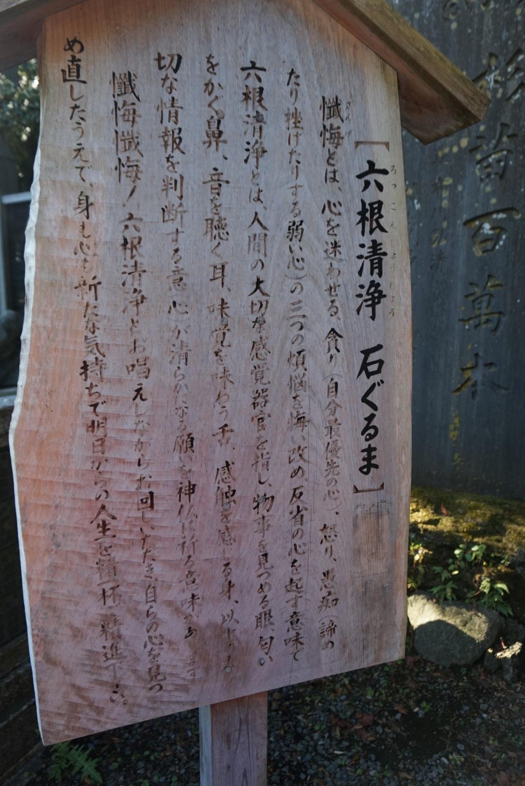 【おでかけ】いよいよ紅葉シーズン♡新宿から1時間以内の紅葉スポットって? _11