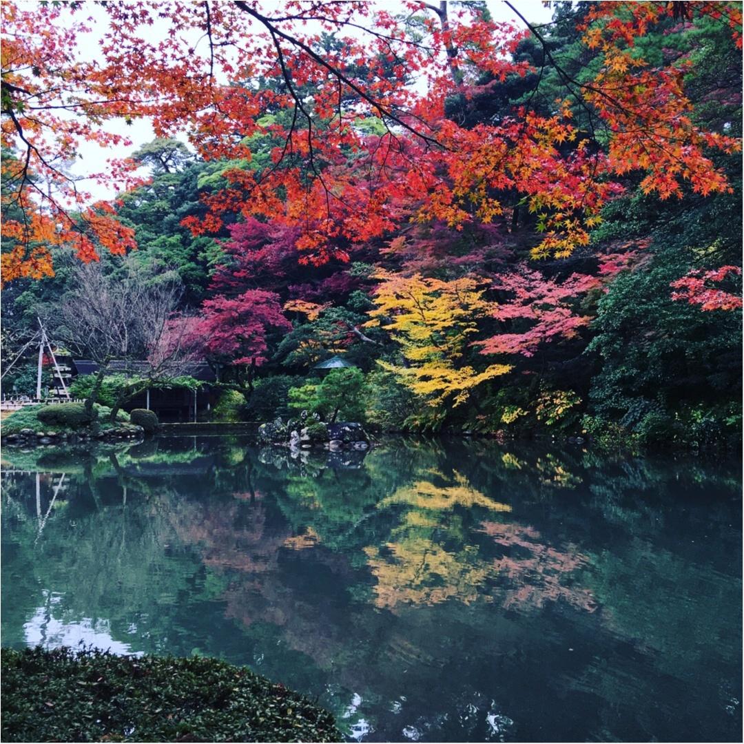 金沢・兼六園の紅葉の美しさにうっとり♡_1
