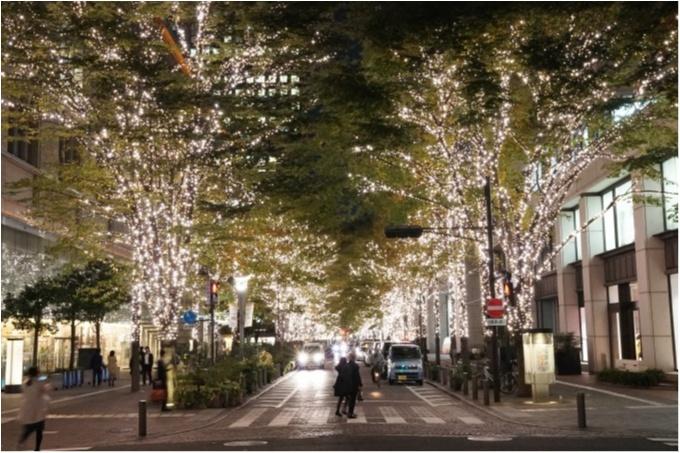 【2018年版】クリスマスにお出かけしたいスポット総まとめ | 東京_19