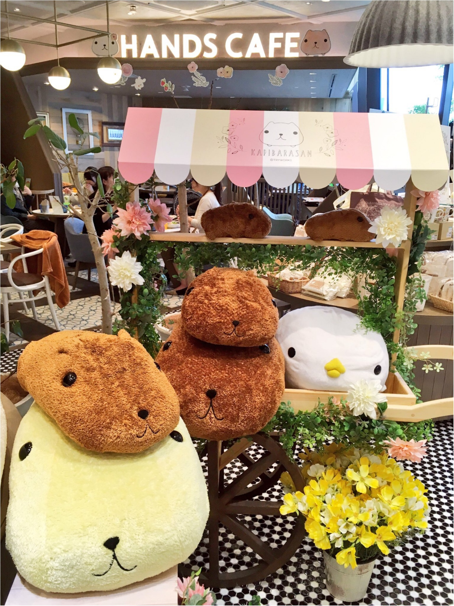 『KAPIBARASAN×HANDS CAFE』@東急表参道原宿店♡りぃイチオシメニューのご紹介(∗•ω•∗)♡_2