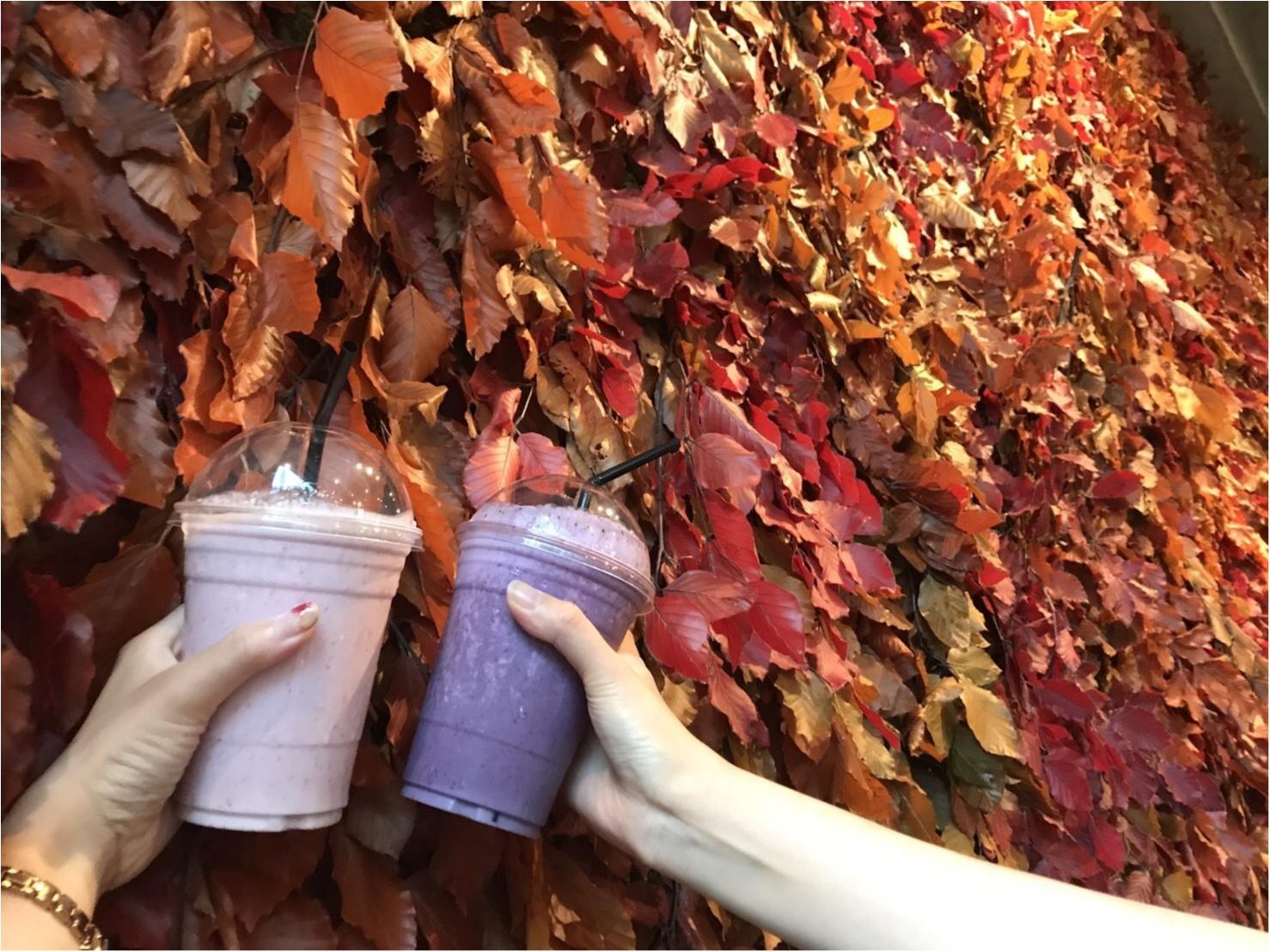 【表参道/CAFE】一足早い秋を感じたいならココ❤︎ニコライバーグマンカフェの秋仕様がとっても可愛いんです!_5