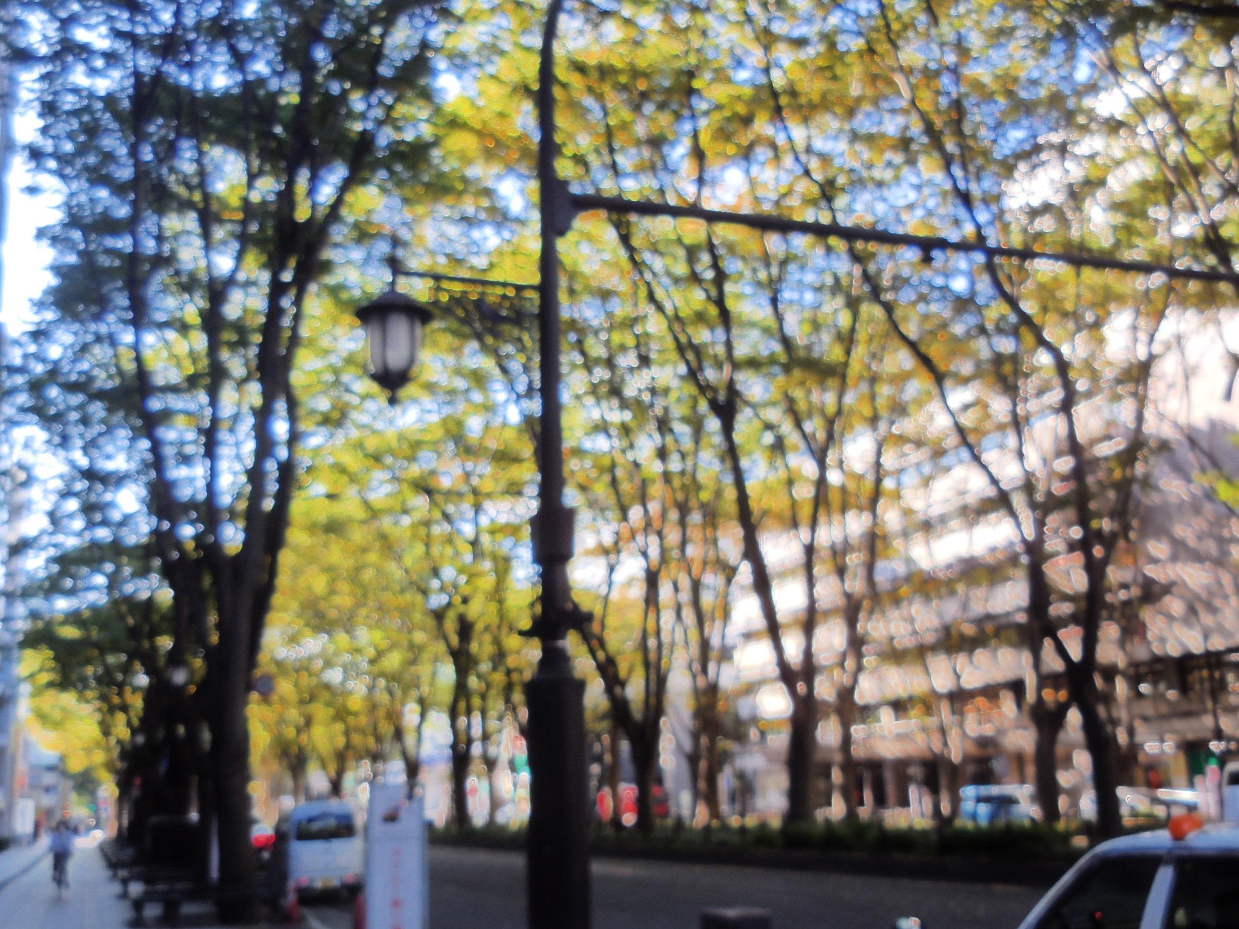 仙台に行ってきました。_5