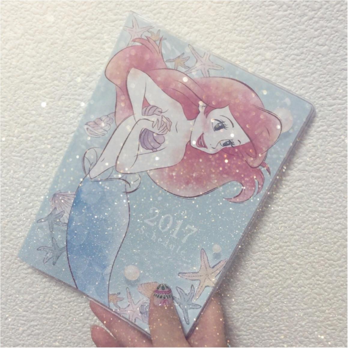 来年のスケジュール帳はあのプリンセス♡hiiko_2