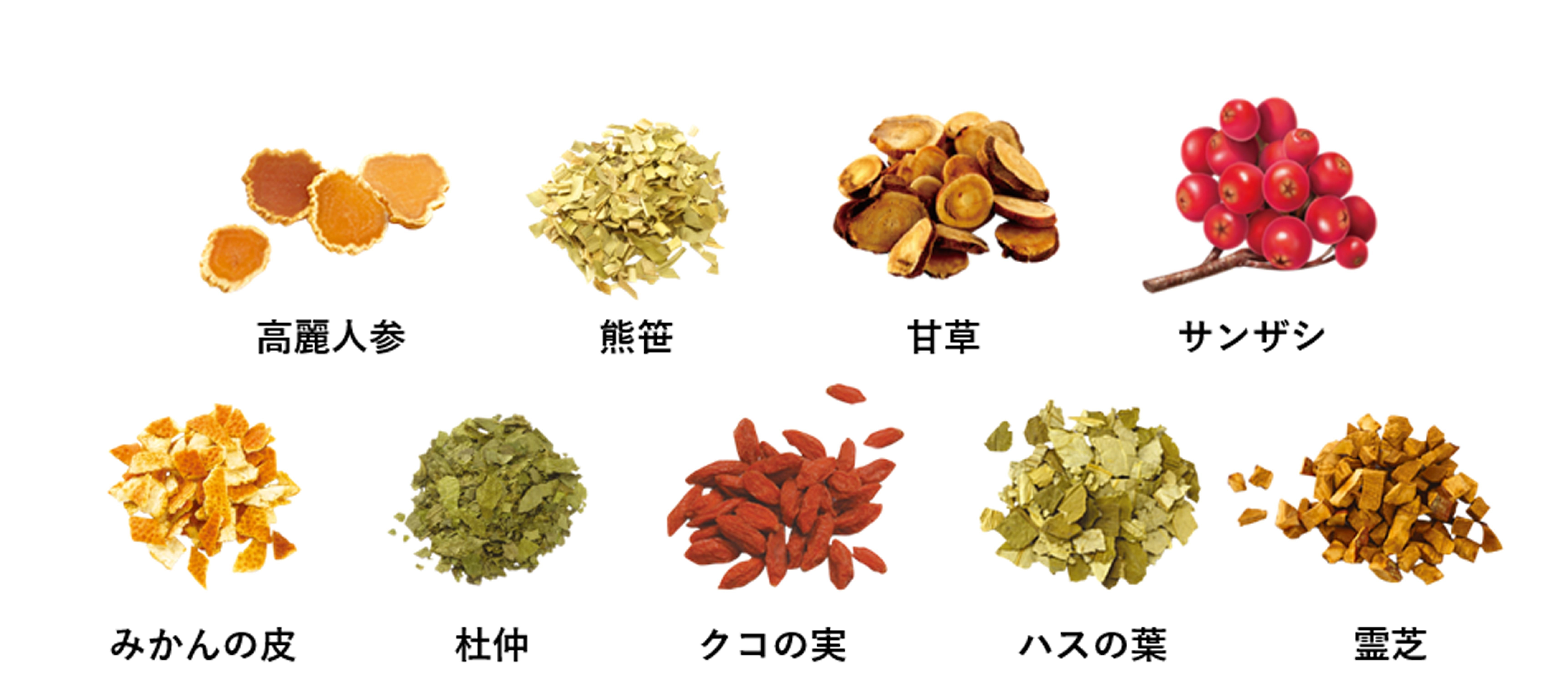 お茶に含まれる9種類の東洋素材