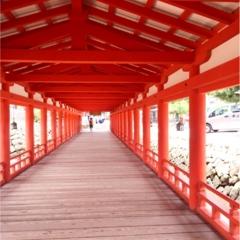 【travel】広島県宮島の過ごし方【この夏にオススメ】