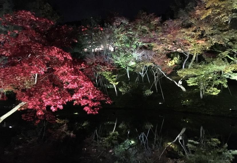 【女子旅におすすめ】京都行くなら紅葉!♡フォトジェニックな穴場スポット紹介6選♡_2