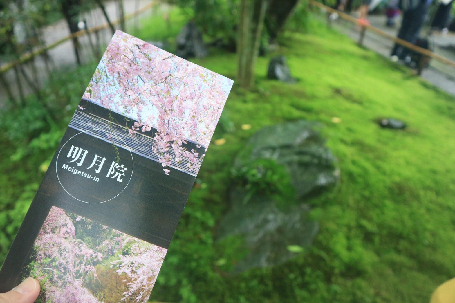 夏着物で鎌倉女子旅♡  紫陽花がとっても綺麗でした♡_5