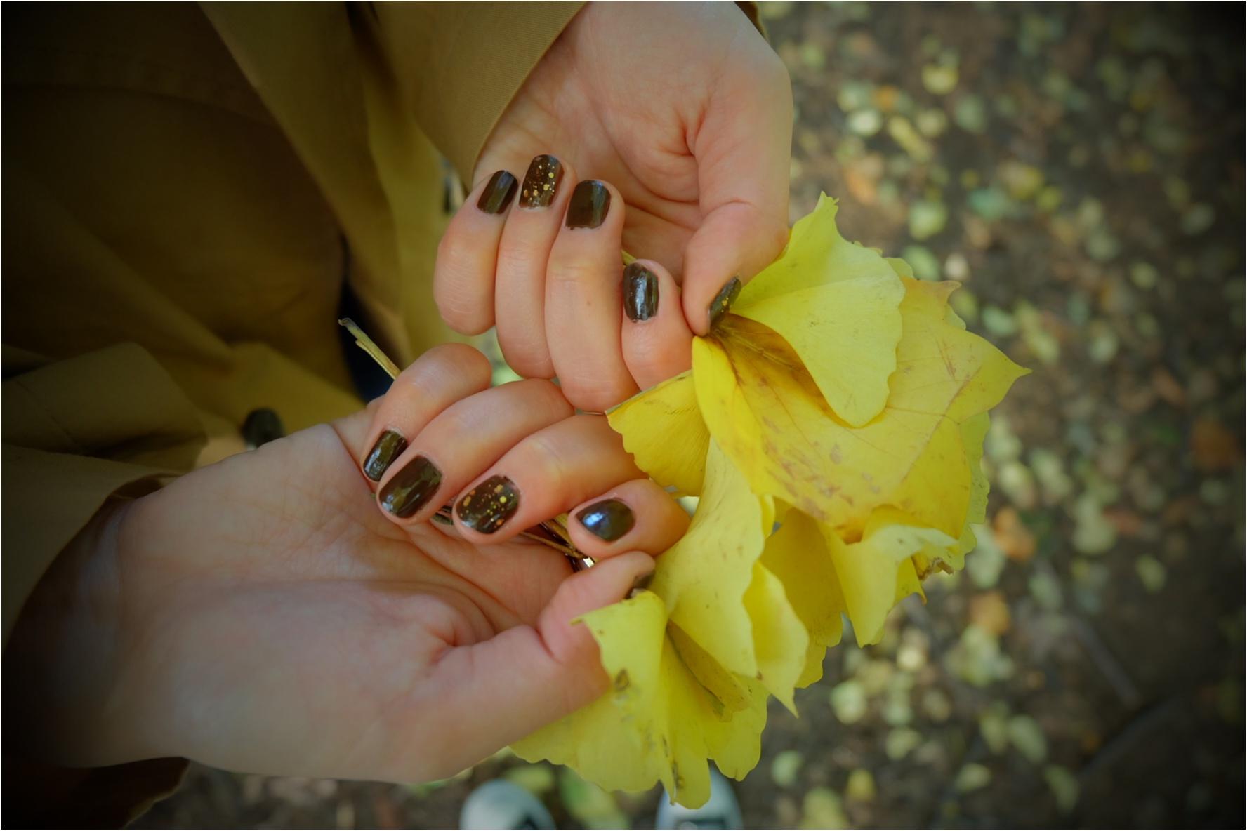 東京でも絶景の紅葉が!《新宿御苑》で秋が始められますよ〜!!フォトスポット&コーディネートも合わせてご紹介!_8