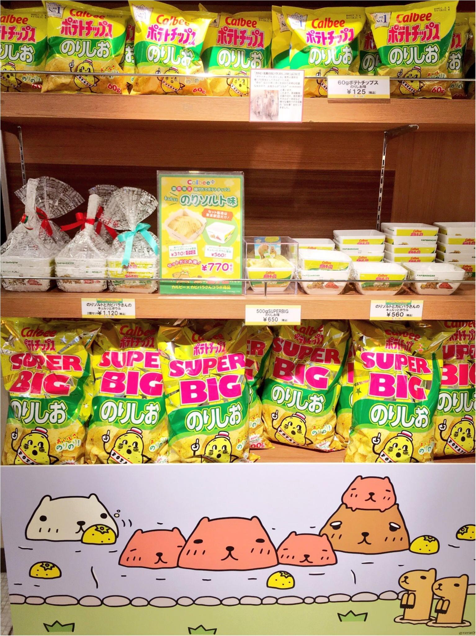 『カピバラさん×東京駅』作者チダケイコ先生サイン会&Calbeeプラスに行ってきました(*´ ˘ `*)♡_9