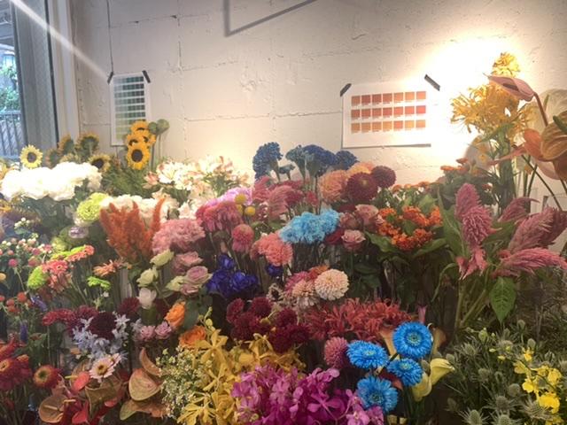 今話題のお花屋さん HANANONAに行ってきました☺︎★【渋谷区】_2