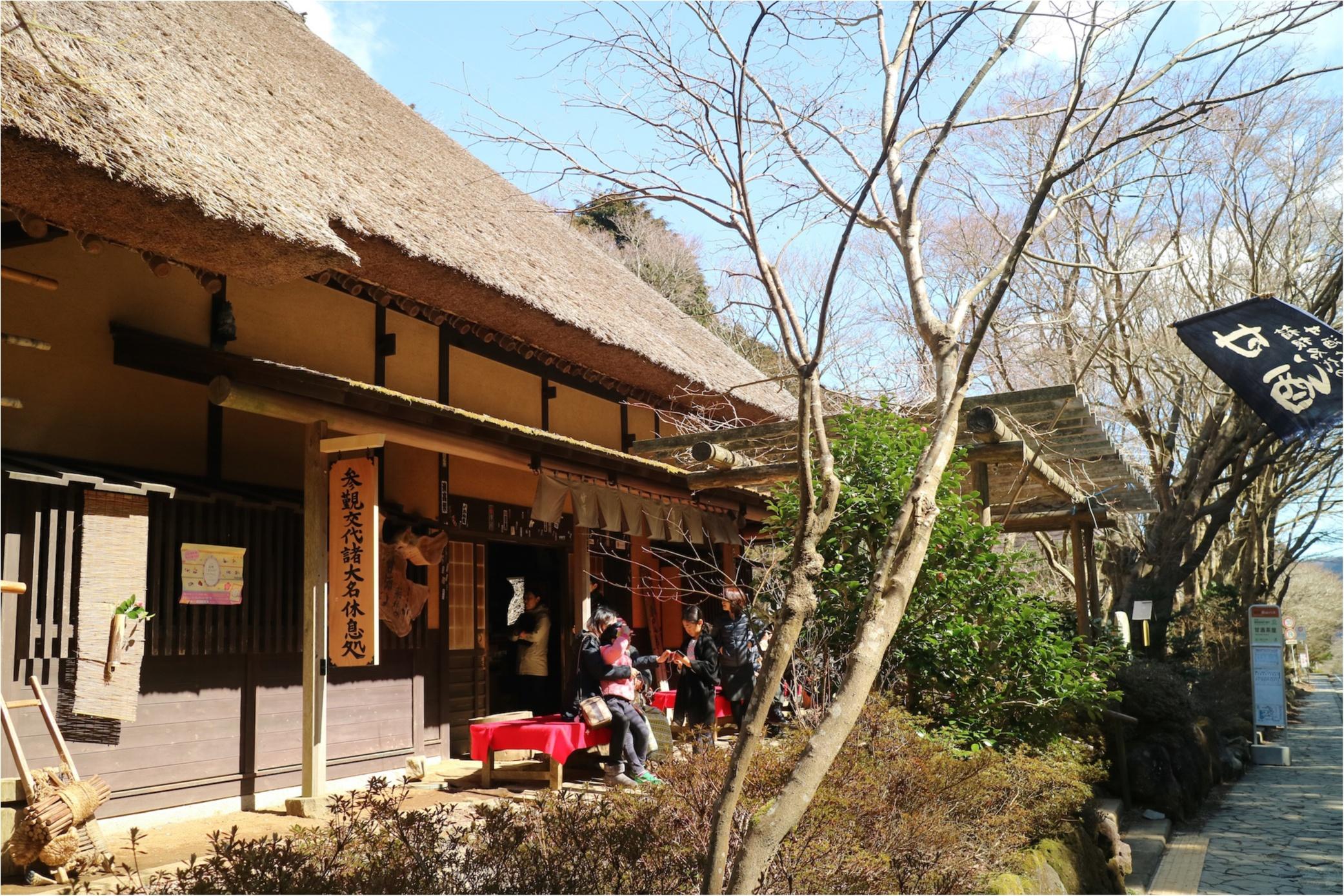 女子旅するなら『星野リゾート 界 箱根』が絶対楽しい♡ リニューアルオープンした【女子旅部屋】とは!?_9