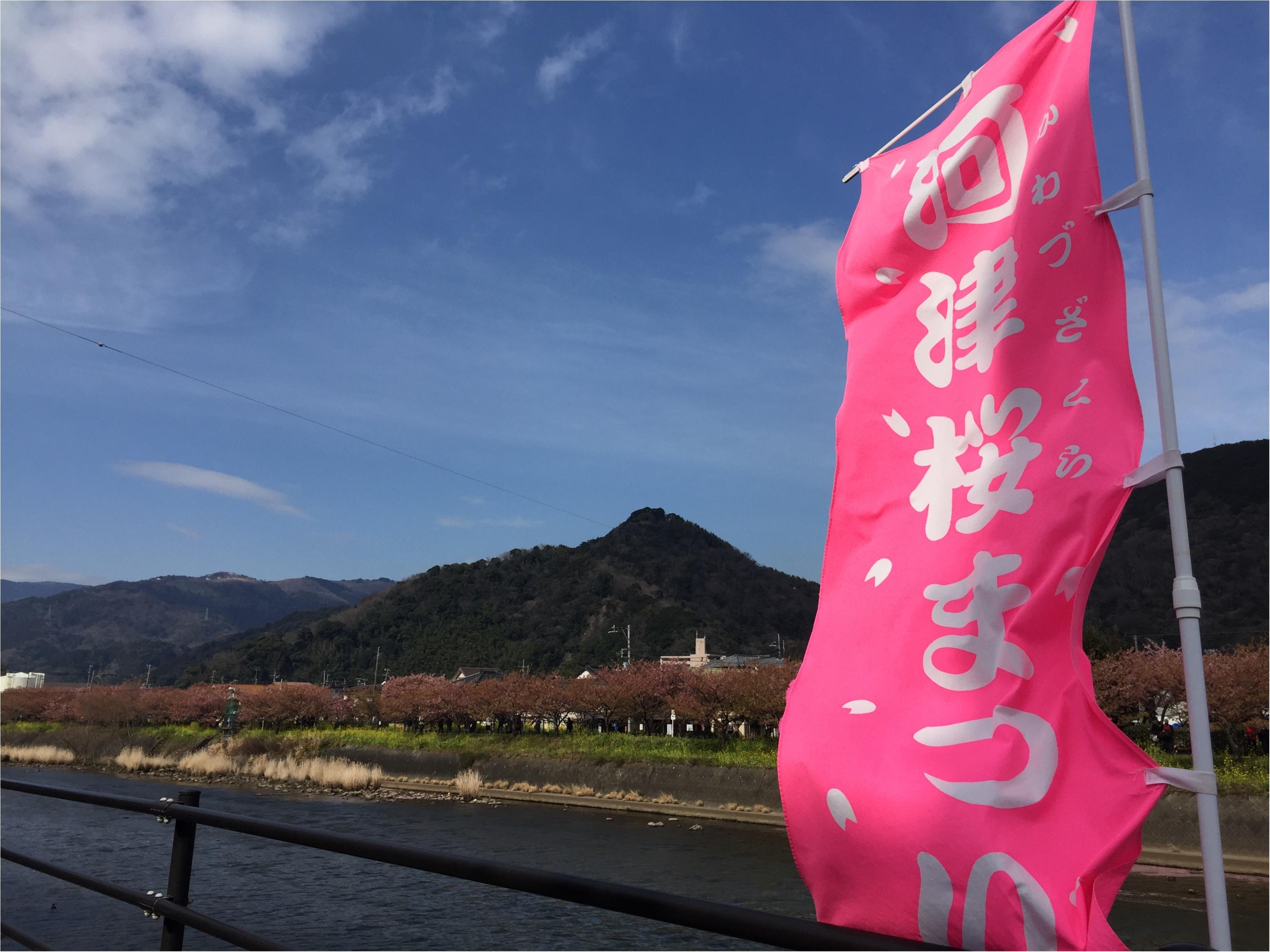 春の訪れを感じに…『河津桜まつり』へ行ってきました♡*_1