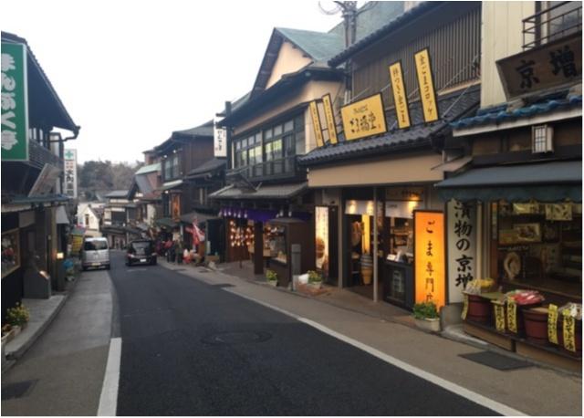 【成田巡り】佐藤姉妹も初詣で訪れた成田山新勝寺にいってきました!_4