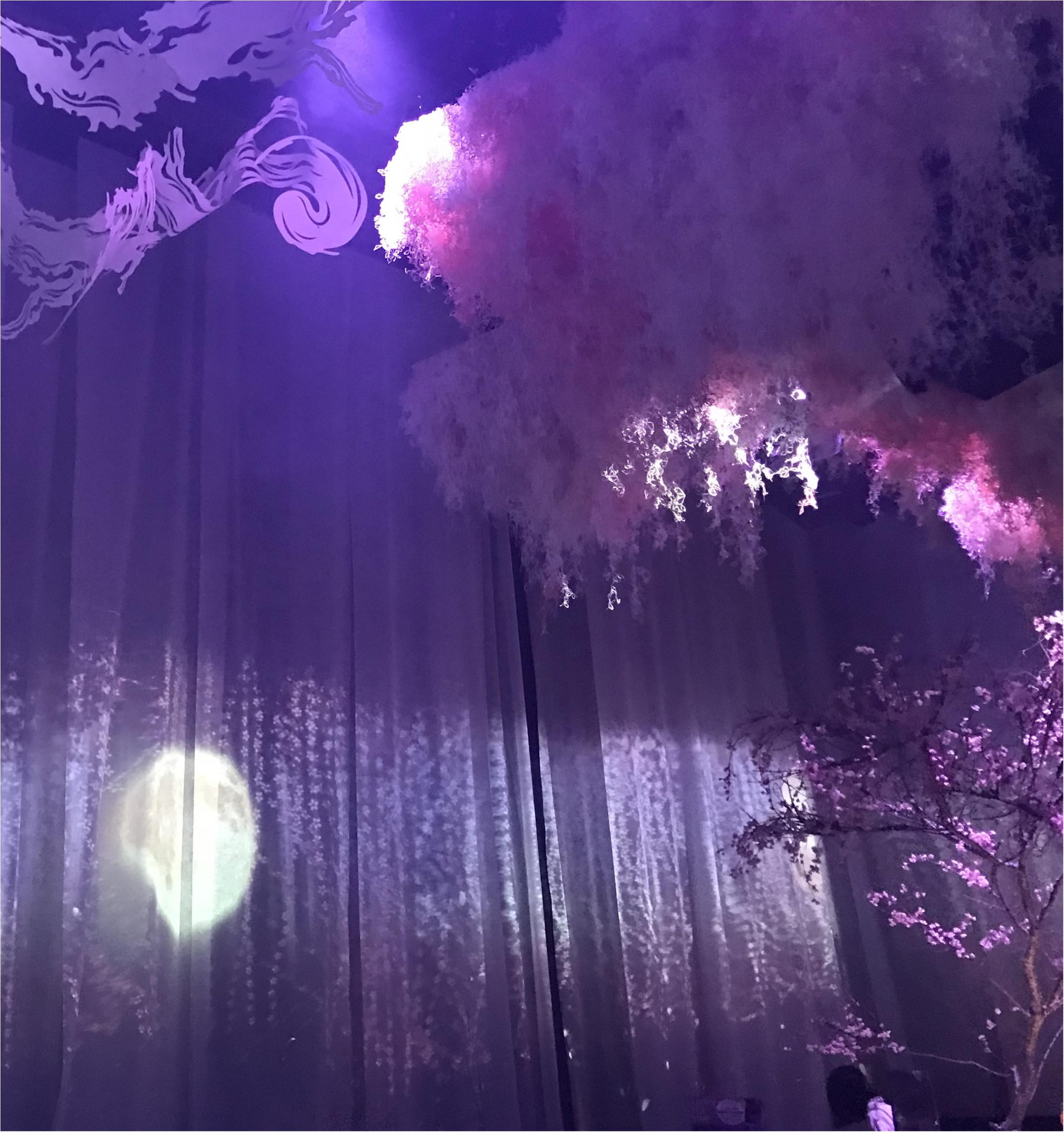 【Flower by NAKED】生花と映像のコラボ♡ フォトジェニックな秋に咲く桜を見てきました♡_5
