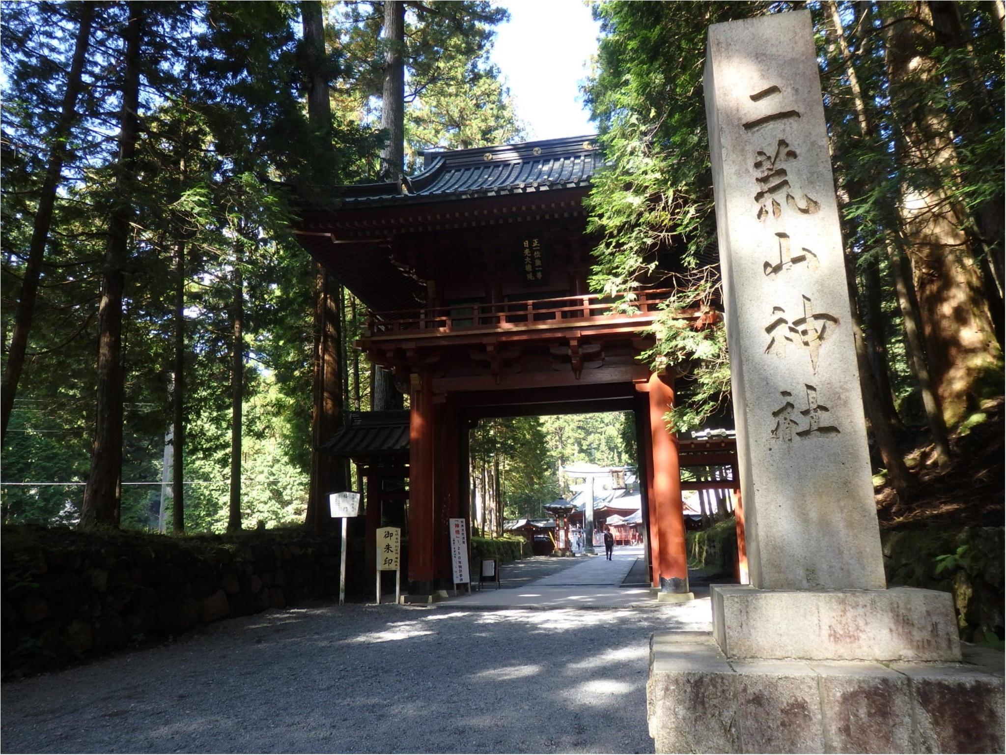 【知らなかった!】日本一楽しめる神社へ潜入してみた_4