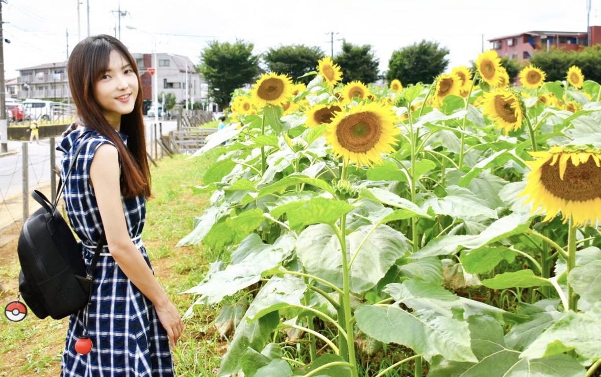 【50万本のひまわり畑】梅雨明け!開けた場所で夏を感じよう_1